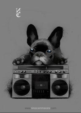bulldog_©NinoCammarata