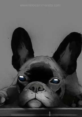 bulldog_particolare