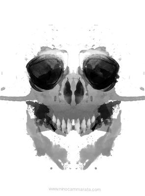 skull_©NinoCammarata